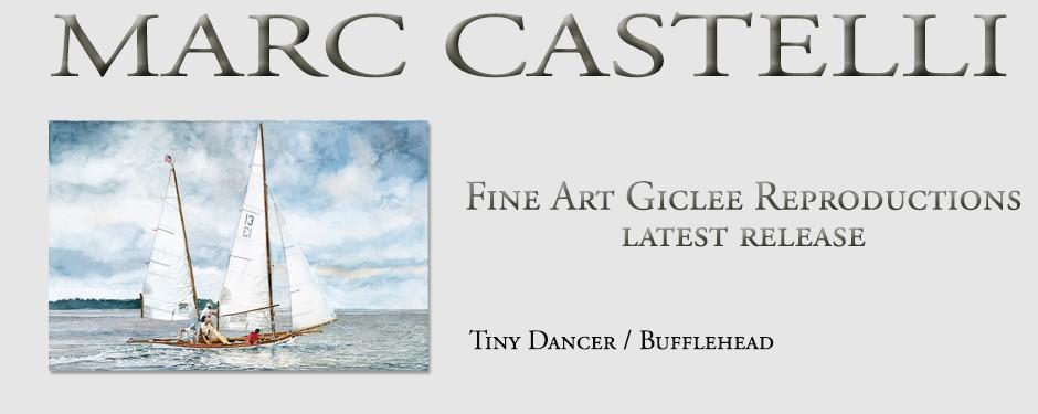 TIny Dancer – Bufflehead