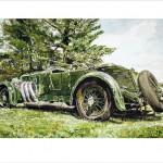 Green on Green / 1931 Bentley 8 L Tourer,Vanden Plas